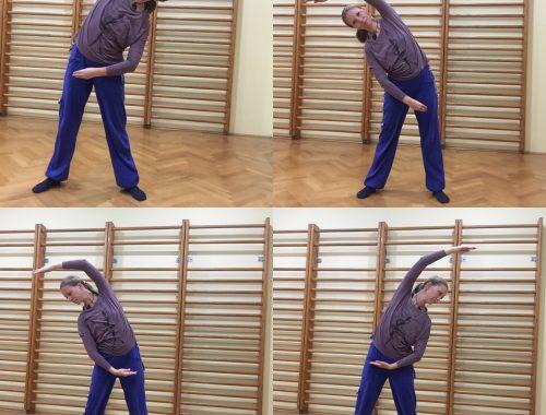 VITAS ENERGY - vaja za razteg hrbtenice